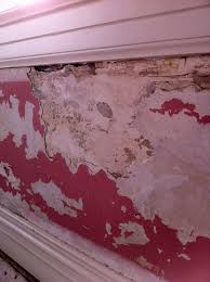 wallpaper damage project kennedy painting st louis 4