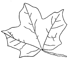 Small Picture Fall Leaves Coloring Pages Kids FunyColoring