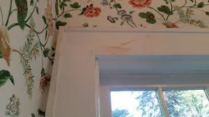 removing old wallpaper paste from