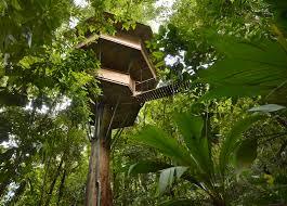 Restaurante Y Café Tree House Costa Rica  Nata Soto VilchezTreehouse Monteverde Costa Rica