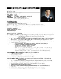 Cv Example Job Application Fast Online Help Sample Resume For