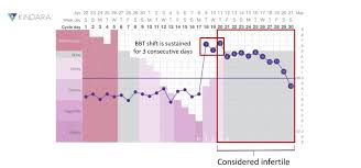 24 Day Menstrual Cycle Chart The 4 Rules Of Charting For Birth Control Kindara
