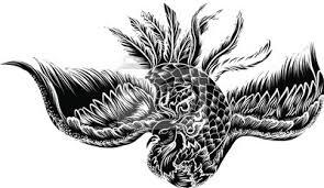 Fototapeta Ručně Tažené Barevné Phoenix Tetování Fire Pták Izolát Na Bílém