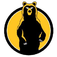 Boston Bruins Concept Logo   Sports Logo History