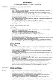 Sector Enforcement Specialist Sample Resume Sector Manager Resume Samples Velvet Jobs 18