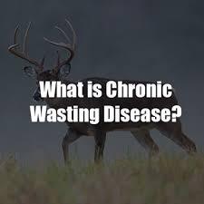Mdwfp Chronic Wasting Disease