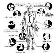 Dim Mak Points Chart Pin By Patrick Cleary On Martial Arts Self Defense Women