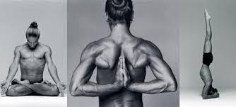 Image result for yoga ashtanga