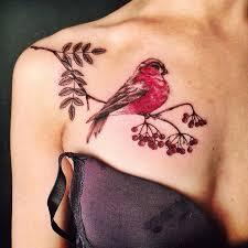 17 карточек в коллекции тату на ключицах птицы цветные