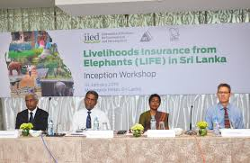 ips and iied explores the possibility of private insurance to mitigate human elephant conflict 10 january 2019 colombo sri lanka