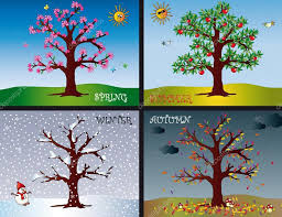 Seasons Picture Chart Four Seasons Stock Photo