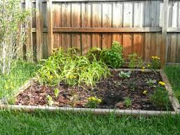 Small Picture Vegetable Garden Design Florida The Garden Inspirations