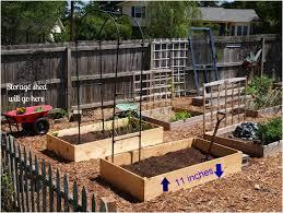 Small Picture Backyards Backyard Vegetable Garden Designs Simple Backyard