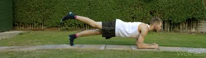 Image result for abdominal side raises