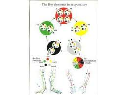 5 Element Chart Five Elements In Acupuncture A4 Chart
