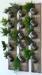 kitchen herb wall garden best herb garden indoor ideas on indoor herbs wall mounted kitchen herb