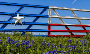 Image result for bluebonnets and texas flag