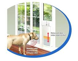 automatic doggy door door installation interesting electronic dog doors with power pet fully automatic pet doors automatic doggy door