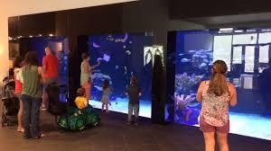 furniture fish tanks. furniture fish tanks