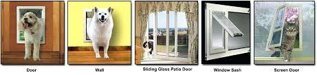installing a doggie door install dog door in glass melbourne