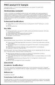 Business Analyst Resume Pdf Inspiration Business Analyst Resume