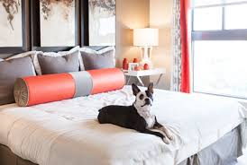 three bedroom apartments in houston tx. pet-friendly apartments at camden post oak three bedroom in houston tx