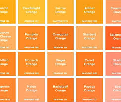 Shades of orange paint Yellow Shades Of Orange Orange Is The Happiest Colour Brand Design Happy Orange Paint Colors Home Decor Laurel Bern Interiors Shades Of Orange Orange Is The Happiest Colour Brand Design Happy