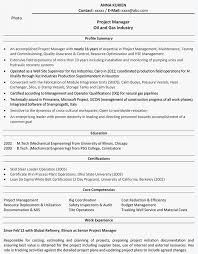 Project Management Resume Examples Project Management Summary