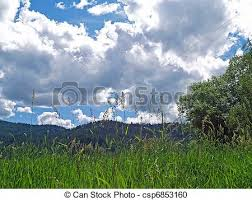 grassy field background. Grassy Field With Mountains And A Partly Cloudy Blue Sky In Background -  Csp6853160 Grassy Field Background .