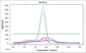 Sybr Green Real Time Pcr Assay For Detection Of The
