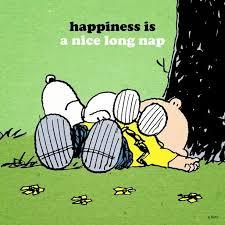 Image result for i love naps