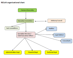 Formal Organizational Chart Recnepal