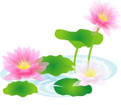 「夏の花 イラスト」の画像検索結果
