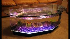 coffee table aquarium for e fish tank cape town uk