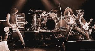Image result for ramones live