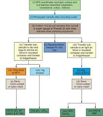 General Flow Chart For Soil Sampling And Analysis