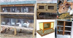 rabbit house plans. 10 Free DIY Rabbit Hutch Plans That Make Raising Bunnies Easy House B