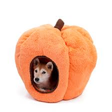orange dog bed. Perfect Orange Hot Sale New Halloween Pet Bed House Orange Dog Bed Animal Cave Nest Puppy  Kennel Cute Pet Cat High Qualityin Houses Kennels U0026 Pens From  To