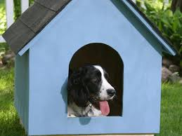 indoor dog house plans for small dogs luxury 17 free diy dog house plans anyone can