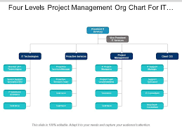 Company Org Chart Four Levels Project Management Org Chart For It Company