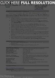Business Intelligence Developer Resume Resume For Study