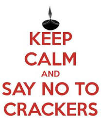 essay on diwali and pollution in english say no to firecrackers
