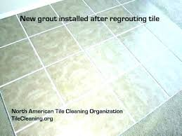 regrout bathroom how