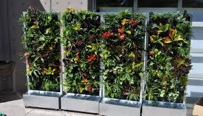 bunnings lights blocks shark tank ideas artificial homebase planters succ pots hangings images mounted herb retaining