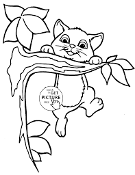 Small Picture Cute small cat animal coloring page for kids animal coloring
