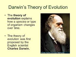 「Charles Darwin's theory of evolution」の画像検索結果