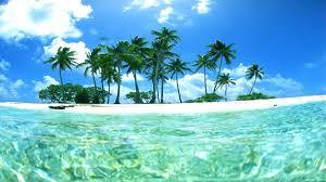 Tropical Wallpaper on HipWallpaper ...