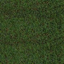 grass texture game. Seamless Grass Texture Game