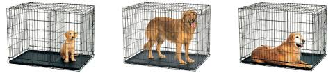 dog crates size chart what size dog crate do you need the ultimate guide animalso