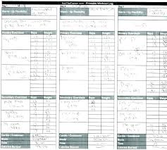 Workout Log Sheets Interesting Fitness Excel Spreadsheet Timberlandproco